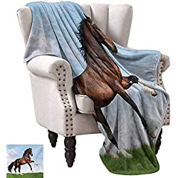 "WinfreyDecor Horses Blanket Sheets Bay Horse Pacing on The Grass Energetic Noble Character of The Nature Concept Cozy for Couch Sofa Bed Beach Travel 36"" Wx60 L Blue Green Brown"