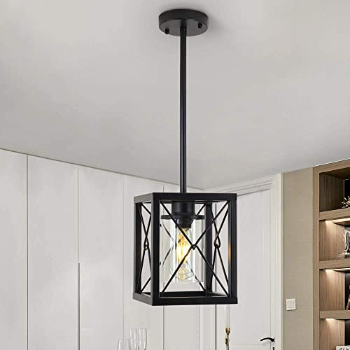 GOODYI 1-Light Black Pendant Light,Metal Wire Cage Hanging Light Fixtures Rustic Industrial Farmhouse Chandelier