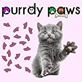 40-Pack Soft Nail Caps For Cat Claws ROYAL PINK GLITTER MEDIUM Purrdy Paws