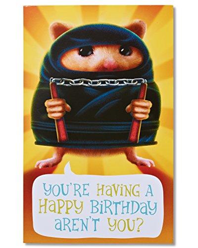 American Greetings Funny Hamster Ninja Birthday Card