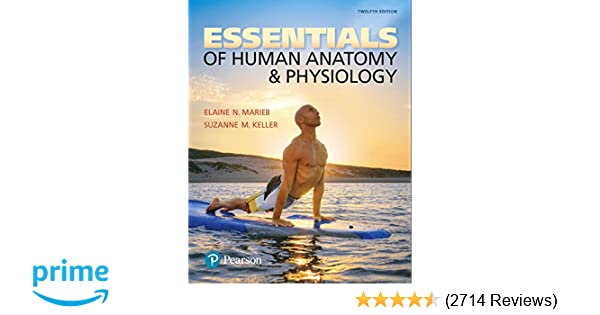 Essentials of Human Anatomy & Physiology (12th Edition ...