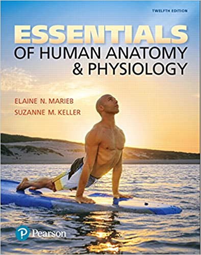 Essentials Of Human Anatomy Physiology 12th Edition By Elaine N Marieb