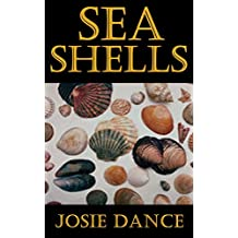 Sea Shells: The Undeniable Facts about Sea Shells
