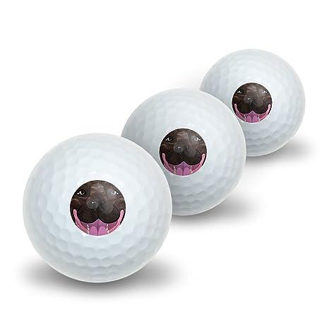 Brindle Pit Bull cara - Pitbull perro mascota novedad pelotas de ...