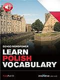 Innovative Language Vocabulary Softwares