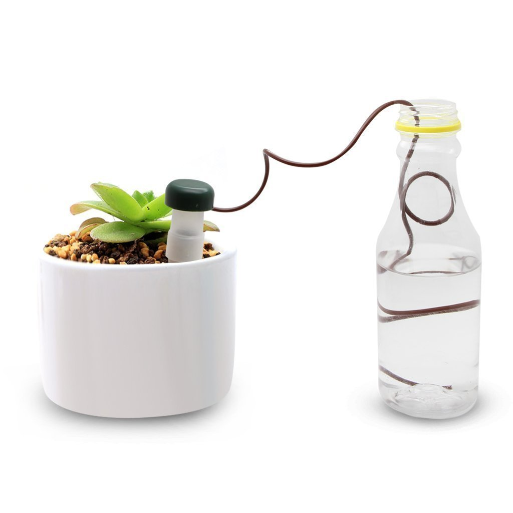 Waterer Plants System When Vacation Away for Outdoor /& Indoor Use Dzzzzc Automatic Potted Waterers Stakes 8 Pack Plant Self Watering Spikes Devices