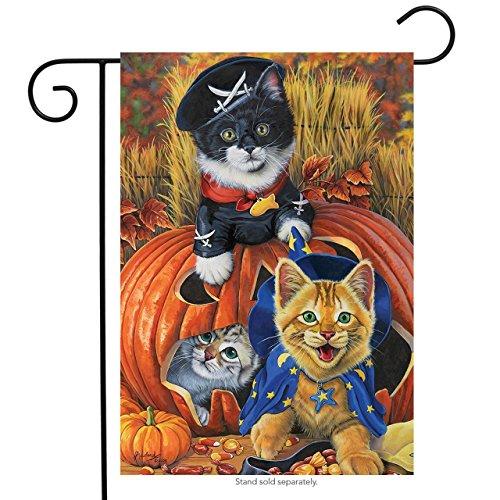 Briarwood Lane Halloween Kittens Garden Flag Pirate Jack O'Lantern Count Cats 12.5
