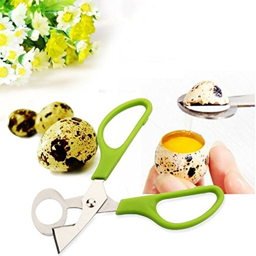 Stainless Steel Pigeon Quail Egg Scissors Egg Cutter Egg Opener Kitchen Gadget Tools, quail egg cutter,egg topper, soft boiled egg cutter,egg cracker, eggshell cutter,chrismast, halloween (Halloween Hard Boiled Eggs)