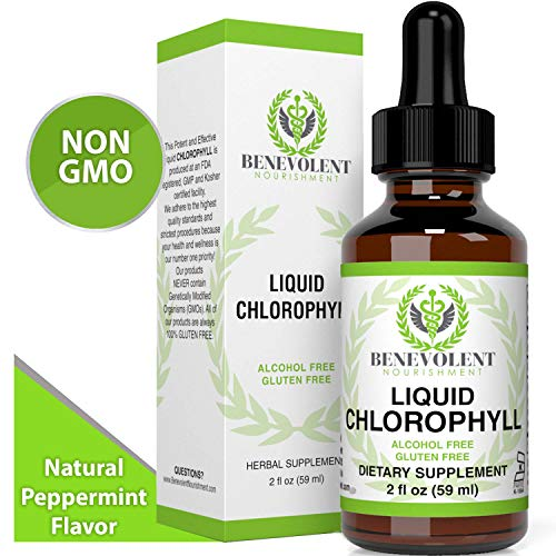 Chlorophyll Liquid Drops - Energy Boost | Immune System Support | Internal Deodorant | Altitude Sickness. Premium Quality - 100% Natural, Potent, Minty Taste, 2X Absorption. Alcohol and Gluten Free.