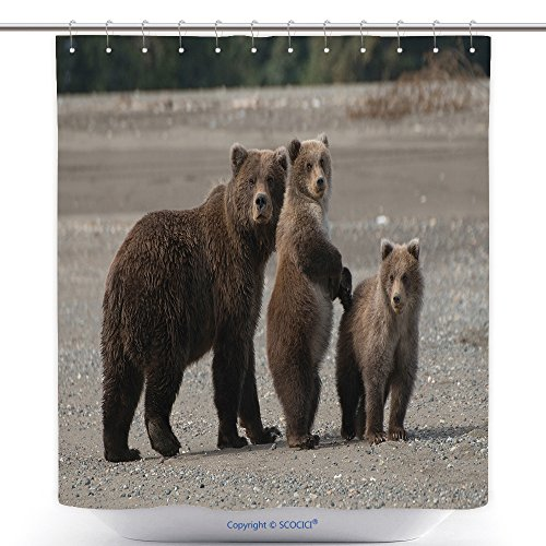 vanfan-Durable Shower Curtains Costal Brown Bears Polyester Bathroom Shower Curtain Set With Hooks(36 x 72 inches)