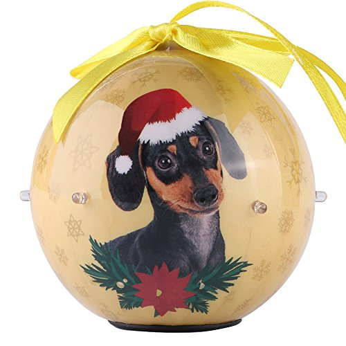 Premium Christmas Dachshund Dog Pet Collection 3 inch Ornaments Ball with Twinkling Lights, Shatterproof Beautiful Hanging Pendants for Xmas Tree, Home, Garden, Indoor and Outdoor Decorations (Ornament Garden Dachshund)