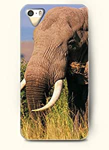 OOFIT Phone Case design with Elephant Eating Grass for Apple iPhone 5 5s 5g