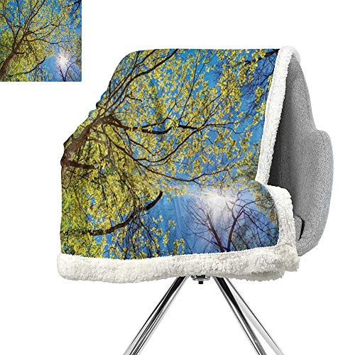 Forest Home Decor Lightweight Fluffy Flannel and Sherpa Blanket,Tree Branches Pastoral Lumber Wide Flourishing Natural Beauty Eco Backed,Green Blue,Print Summer Quilt Comforter W59xL47 Inch