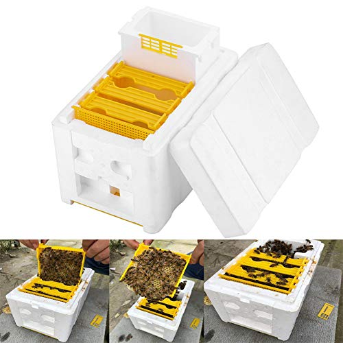 Everrich Harvest Bee Hive Beekeeping King Breed Box Pollination Box Beekeeping Tool Perfect for Garden pollination (Polystyrene Hive Bee)