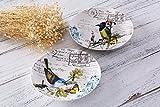 Mallvoler Flower and Bird Design China Dinnerware- Small Dinner Plates, 8 inch, Set of 2