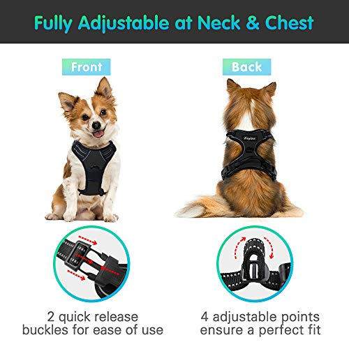 Eagloo-No-Pull-Dog-Harness-with-Front-Clip-Walking-Pet-Harness-with-2-Metal-Ring-and-Handle-Reflective-Oxford-Padded-Soft-Vest-Dog-Chest-Harness-Dog-Car-Harness-for-Small-Medium-Large-Dog