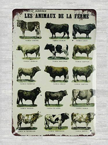 DYTrade Tin Metal Sign 16 x 12 - Les animaux de la Ferme Farm Animals tin Sign Farm House Art
