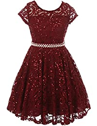 Cap Sleeve Floral Lace Glitter Pearl Holiday Party Flower Girl Dress