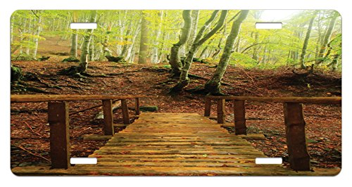 - Lunarable Landscape License Plate, Weathered Old Wooden Bridge River to Footpath Birch Trees in Autumn, High Gloss Aluminum Novelty Plate, 5.88 L X 11.88 W Inches, Brown Pale Green Peru