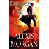 Darkness on Fire (Paladins of Darkness Book 9)
