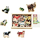 Melissa & Doug Magnetic Animals in A Box, Multicolor