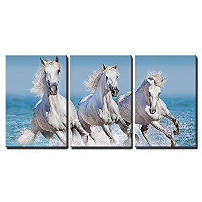 Crafted to Perfection, Majestic Artistry, Horse Herd Run Gallop in Waves in The Ocean x3 Panels