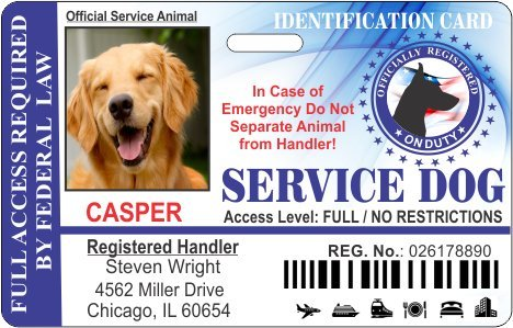 Service Dog Horizontal Badge ID