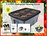 DWC Hydroponic BUBBLER System #4, 6 site by H2OtoGro