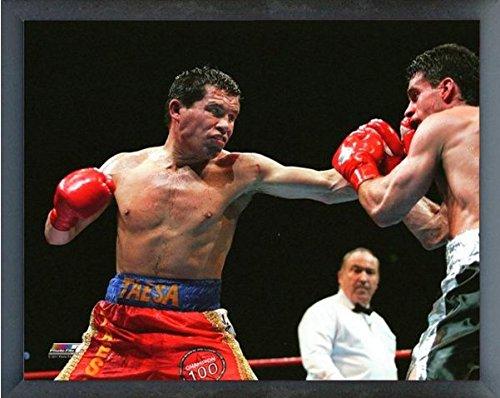 Chavez Framed - Julio Cesar Chavez Boxing Action Photo (Size: 12