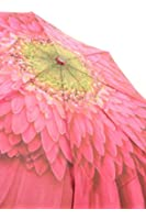 Galleria Gerbera Daisy Folding Umbrealla (Gerbera Daisy)