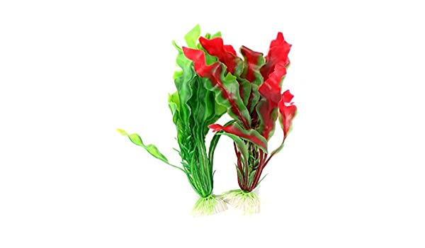 Amazon.com : eDealMax acuario 2pcs 7.9 Altura Red Green agua de plástico acuática Plantas de la decoración : Pet Supplies