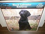 Black Labrador Retriever- Best Friends 1999 16mth Calendar