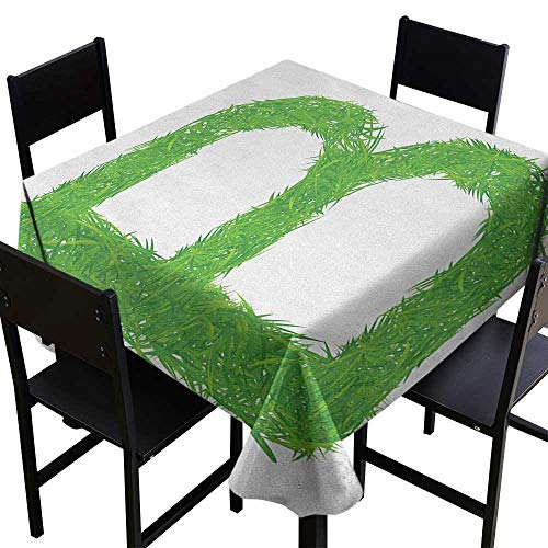 SKDSArts Square Tablecloth Black Letter B,Kids Baby Boys Children Capital B Name Fresh Growth Environment Ecology Concept, Green White,W54 x L54 Square Tablecloth