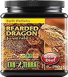Exo Terra Soft Juvenile Bearded Dragon