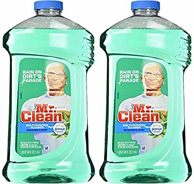 Mr. Clean with Febreze Freshness Meadows & Rain Multi-Surface Cleaner 40 oz (2 Bottles)