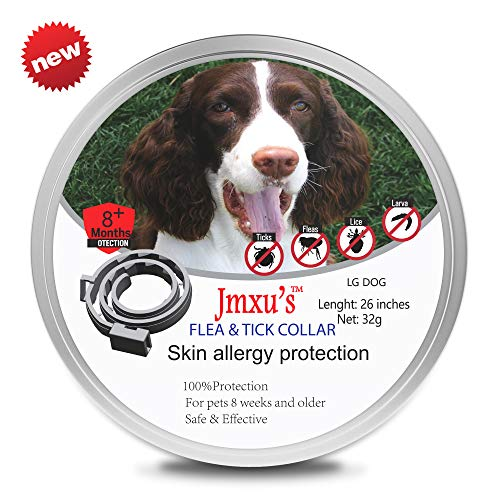 Flea & Tick Collar for Dogs and Cats by Jmxu's