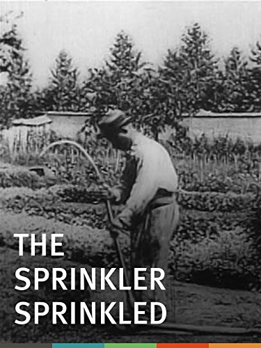 Trademark Stationary (The Sprinkler Sprinkled)