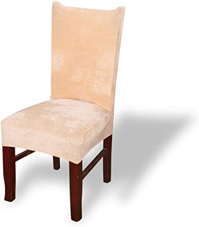 Fashion·LIFE Housse de Chaise 6 pièces Housse de Protection élastique Moderne Couverture de Chaise Décor pour Bureau Hôtel Décor de Restaurant,Paon