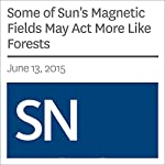 Some of Sun's Magnetic Fields May Act More Like Forests | Christopher Crockett