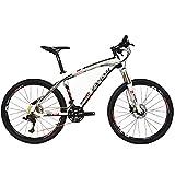 Beiou - Bicicleta de montaña de fibra de carbono Hardtail MTB Ltwoo, 30 velocidades, 13 kg, 66 cm / 26 pulgadas, cable externo profesional, Toray T700 CB083