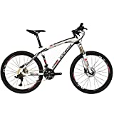 BEIOU Carbon Fiber Mountain Bike Hardtail MTB LTWOO 30 Speed (Small Image)