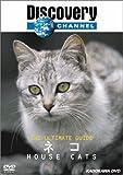 ディスカバリーチャンネル The Ultimate Guide ネコ [DVD]