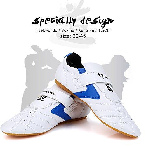 Vbestlife Taekwondo Shoes Men Women Kids Martial Art Shoes Karate Kung Fu Tai Chi Shoes Comfortable Lightweight Taekwondo Training Sports Shoes - Blue(45 fit for Foot Length 265mm) (Karate Shoes Boys)
