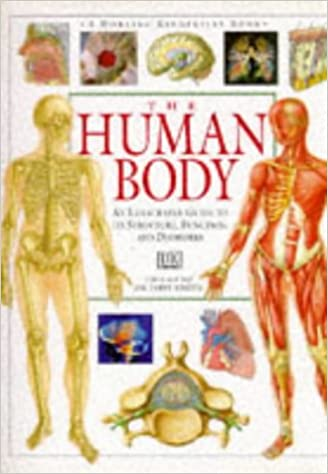 Amazon.com: The Human Body: An Illustrated Guide to its Structure, Function, and Disorders (9780751352719): Tony Smith: Books