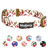 Blueberry Pet 11 Patterns Spring Scent Inspired Pink Rose Print Ivory Adjustable Dog Collar, Small, Neck 12'-16'