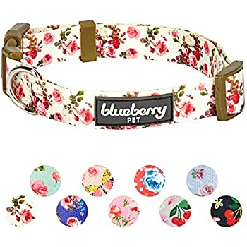 Blueberry Pet 11 Patterns Spring Scent Inspired Pink Rose Print Ivory Adjustable Dog Collar, Small, Neck 12