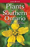img - for Plants of Southern Ontario: Trees, Shrubs, Wildflowers, Grasses, Ferns, & Aquatic Plants book / textbook / text book