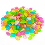 Christmas Glowing Pebbles Lychee® 200 Pcs Glow in The Dark Luminous Stone Rocks (Multicolor)