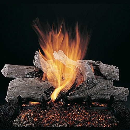Log Set Remote Ready Valve - Rasmussen 20-inch Evening Campfire Gas Log Set with Vented Valve Vanisher Propane Custom Pan Burner - Remote Ready Safety Pilot