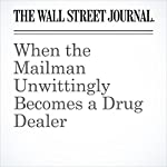 When the Mailman Unwittingly Becomes a Drug Dealer | Arian Campo-Flores,Jon Kamp